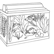 Awesome Fish Tank Coloring Page