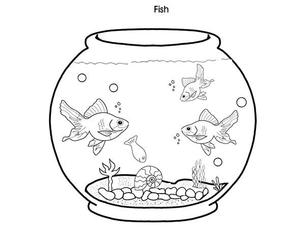 Cheap Fish Tank Coloring Page