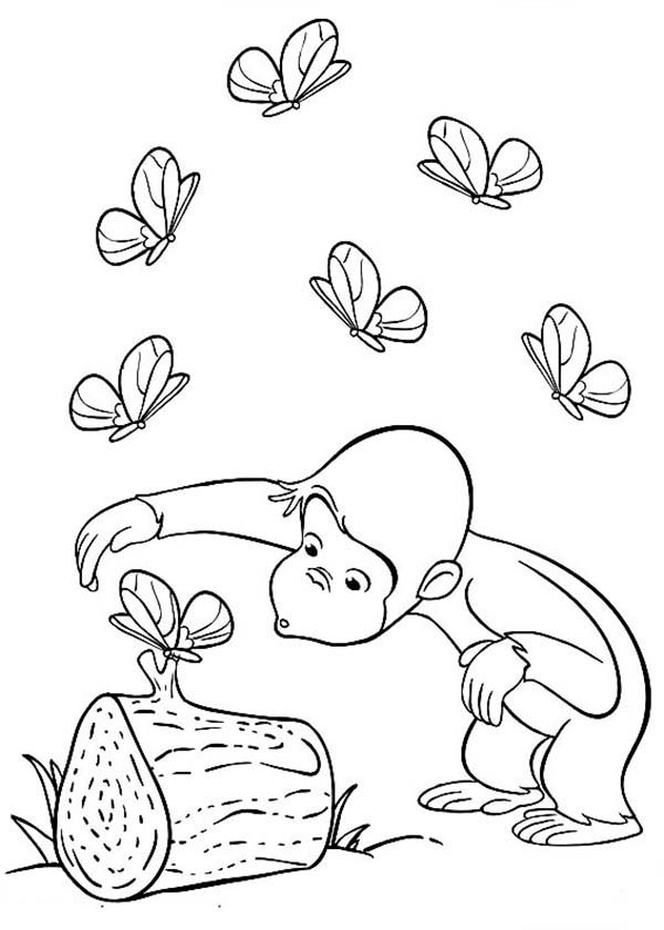 Curious George Curious About Butterfly Coloring Page Netart