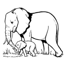 Elephant and Baby Elephant Looking for Fresh Grass Coloring Page
