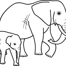Elephant and His Mother Coloring Page
