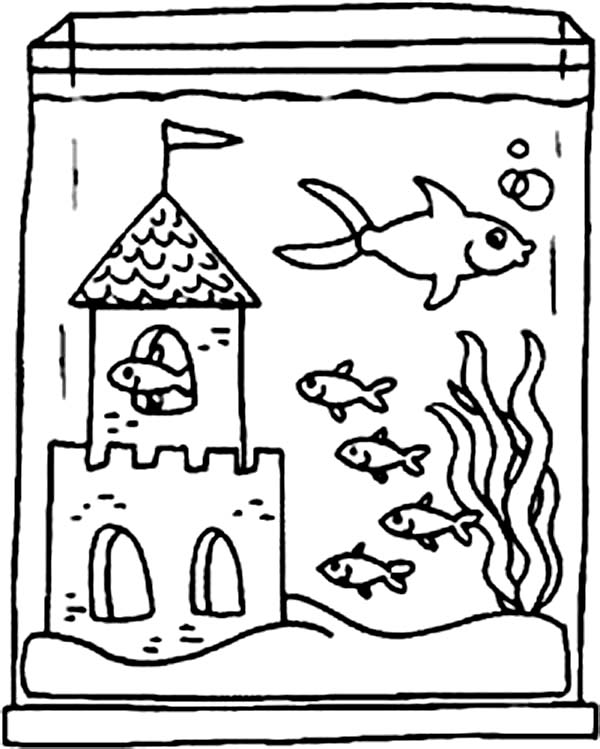 Fish Tank and Castle Inside Coloring Page