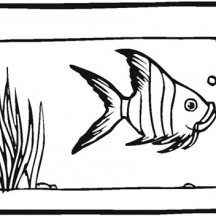 Fish Tank for Angel Fish Coloring Page