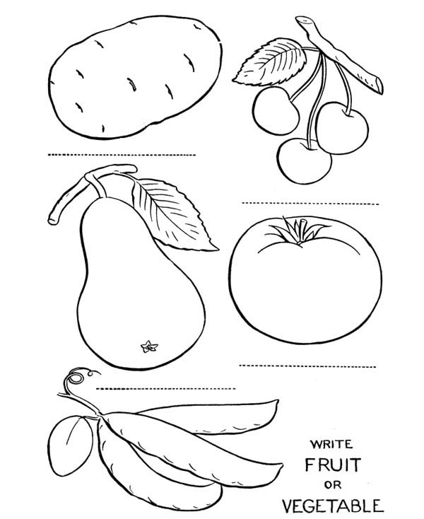 Fruit Questioner Coloring Page