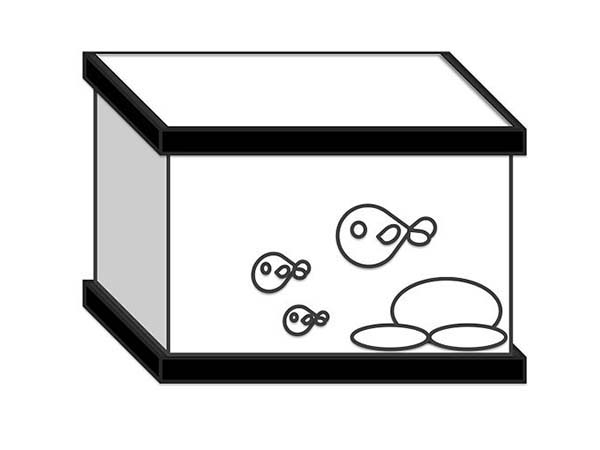 Kids Drawing of Fish Tank Coloring Page