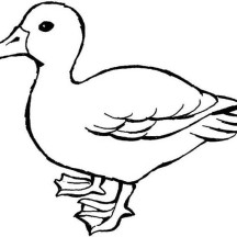Mother of Duck Coloring Page