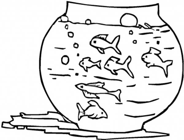 Too Many Fish in This Fish Tank Coloring Page