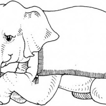 Trained Elephant is Sitting Down Coloring Page