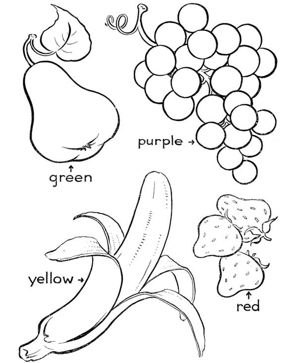 Various Type of Fruit Coloring Page