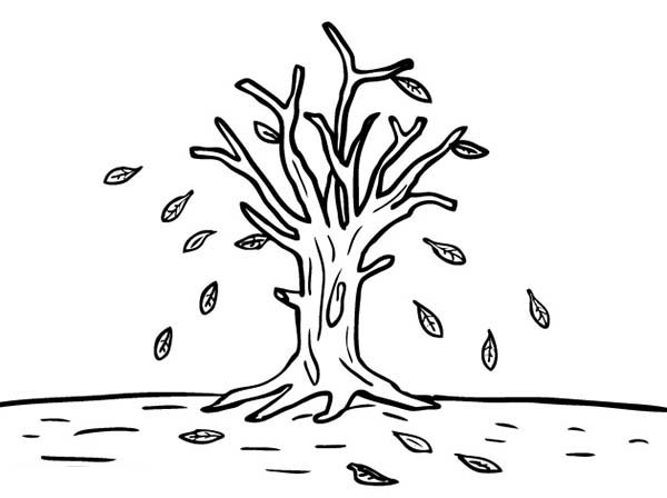 Fall Color Pages Printable In Coloring For Kids 235x190: Leafless Tree In Autumn Leaf Coloring Page