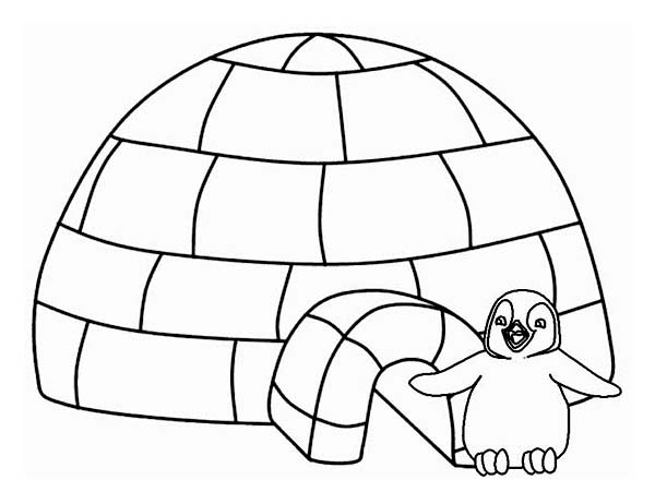 Lovely Penguin and His Iglo on Winter Season Coloring Page