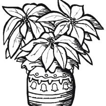 Poinsettia in a Nice Pottery for National Poinsettia Day Coloring Page