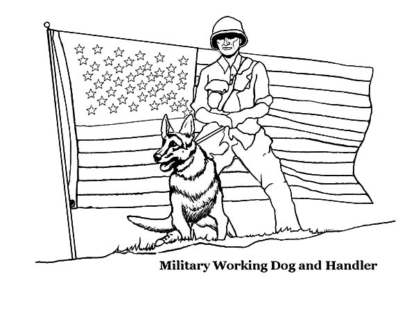 military working dog and handler on independence day event