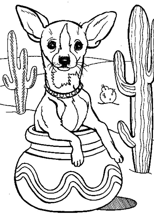 Cactus Tree and Chihuahua Dog Inside Pottery Coloring Pages