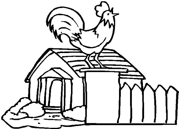 Chicken Coop and Crowing Rooster Coloring Pages