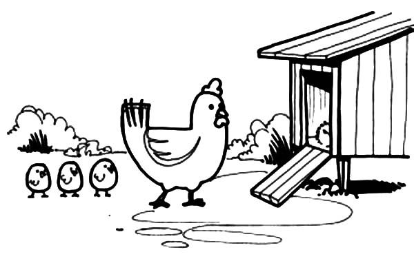 Chicken Mother Lead Her Chick Enter Chicken Coop Coloring Pages