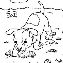 Chihuahua Dog Digging a Hole Coloring Pages