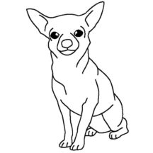 Chihuahua Dog Posing Coloring Pages