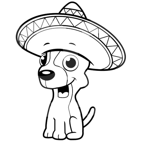 Chihuahua Dog Sitting and Wearing a Sombrero Coloring Pages