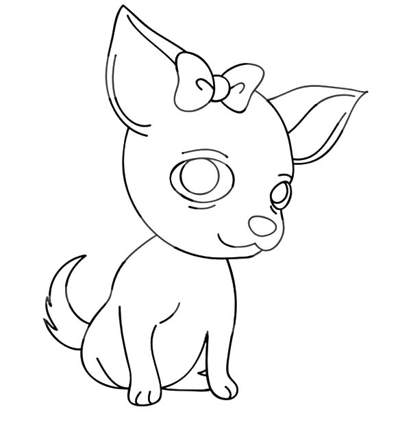 Chihuahua Dog with a Bow Coloring Pages