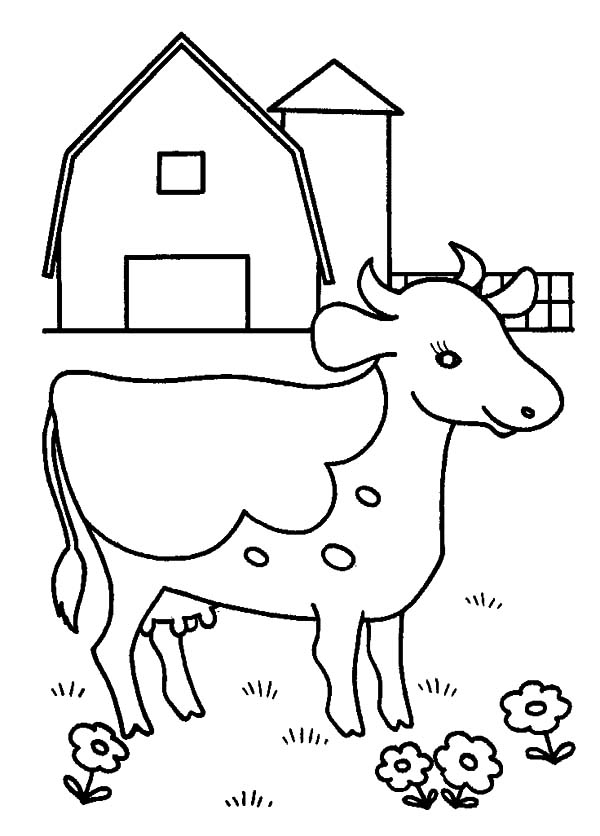 dairy farm coloring pages | Dairy Cow | NetArt