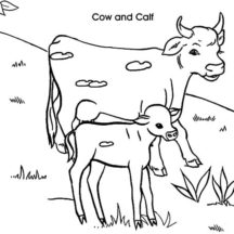 Dairy Cow and Calf Coloring Pages