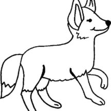 Desert Fox Walking Coloring Pages