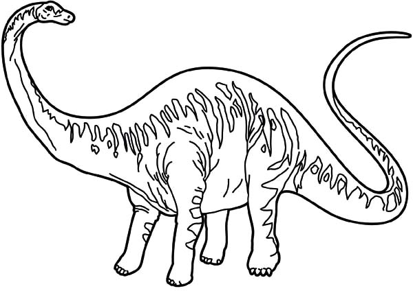 Diplodocus Looking Back Coloring Pages