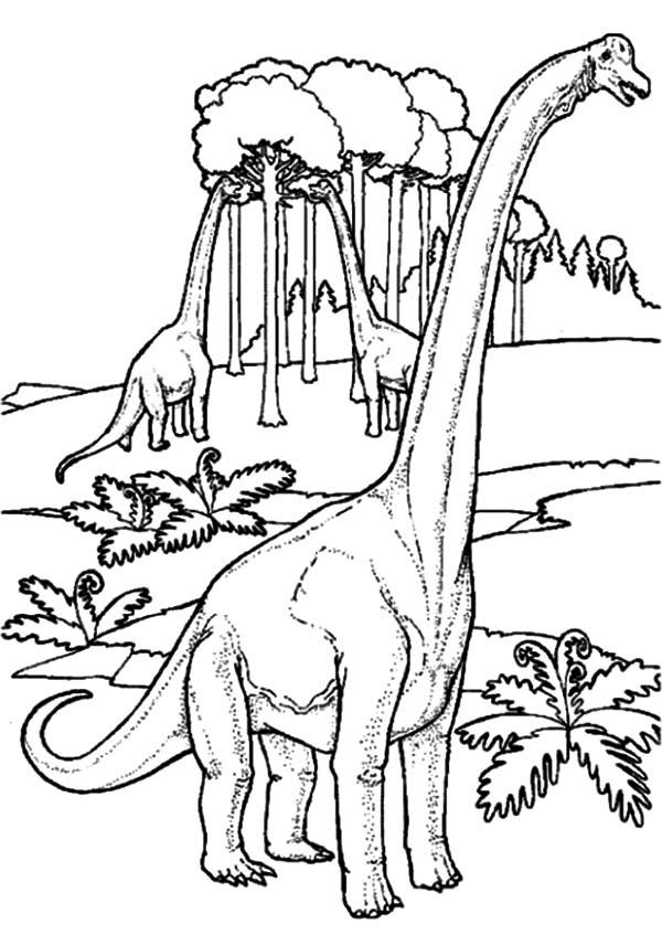 Diplodocus in the Jungle Coloring Pages