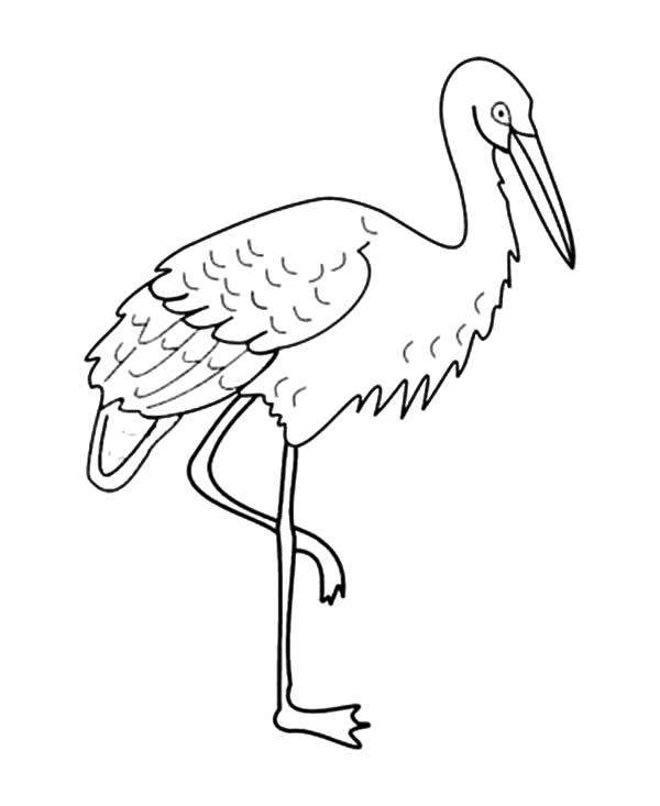Drawing Crane Bird Coloring Pages