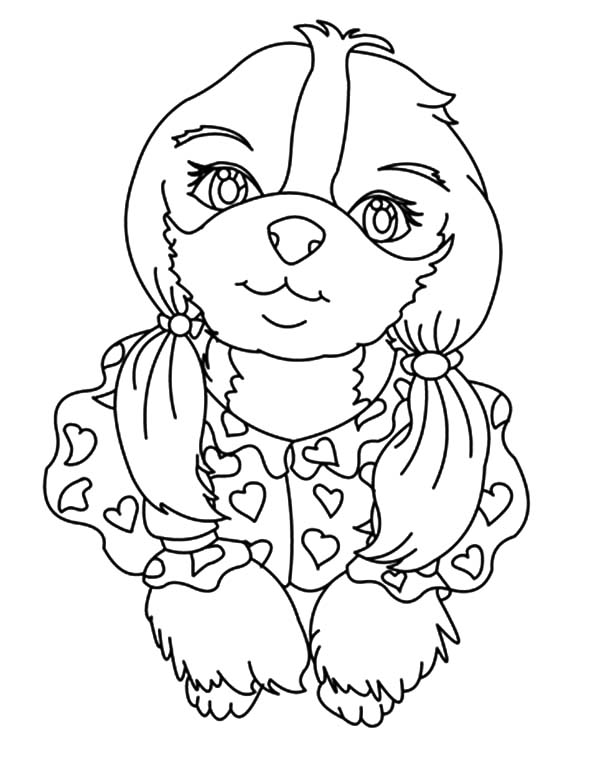Female Chihuahua Dog Pigtails Coloring Pages