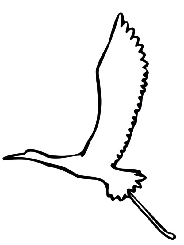 Flying Crane Bird Outline Coloring Pages