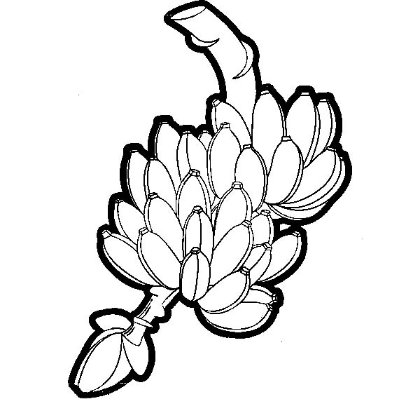 bunch of banana coloring pages - photo#9