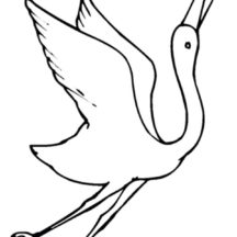 How to Draw Crane Bird Coloring Pages