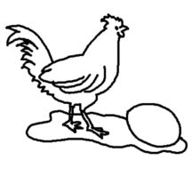 Rooster and Chicken Egg Coloring Pages