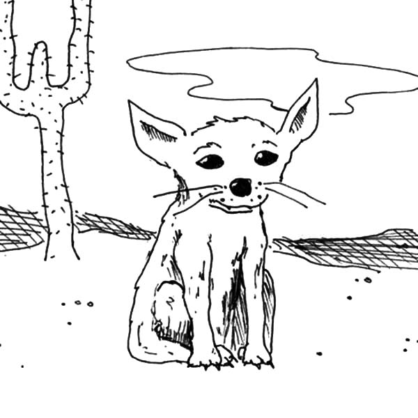 Thin Desert Fox Coloring Pages