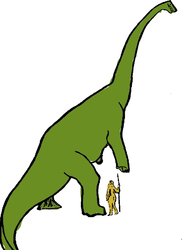 Diplodocus Lifting His Leg Coloring Pages by years old Claude C  Shelton
