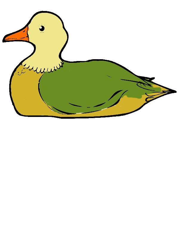 Duck is Sitting Down Coloring Page by years old Chester C  Lloyd