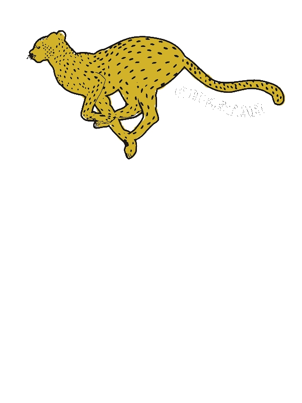 Great Cheetah Picture Coloring Page by years old Armand J  Scott