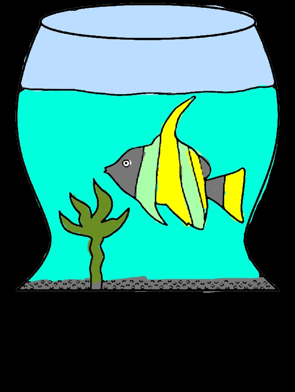 Learn Fish Life in Fish Tank Coloring Page by years old Andrew T  Budd