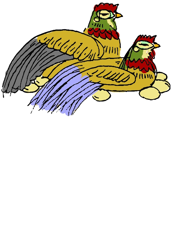 Twin Chicken Lay Egg Coloring Pages by years old Marc M  Casler