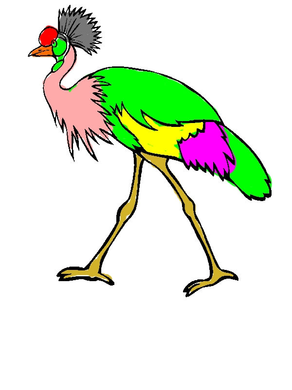 Walking Crane Bird Coloring Pages by years old Aaron J  Bancroft