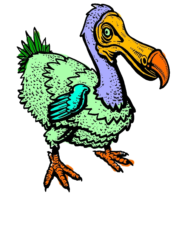 Wildlife Dodo Bird Coloring Pages by years old Molly C  Miller